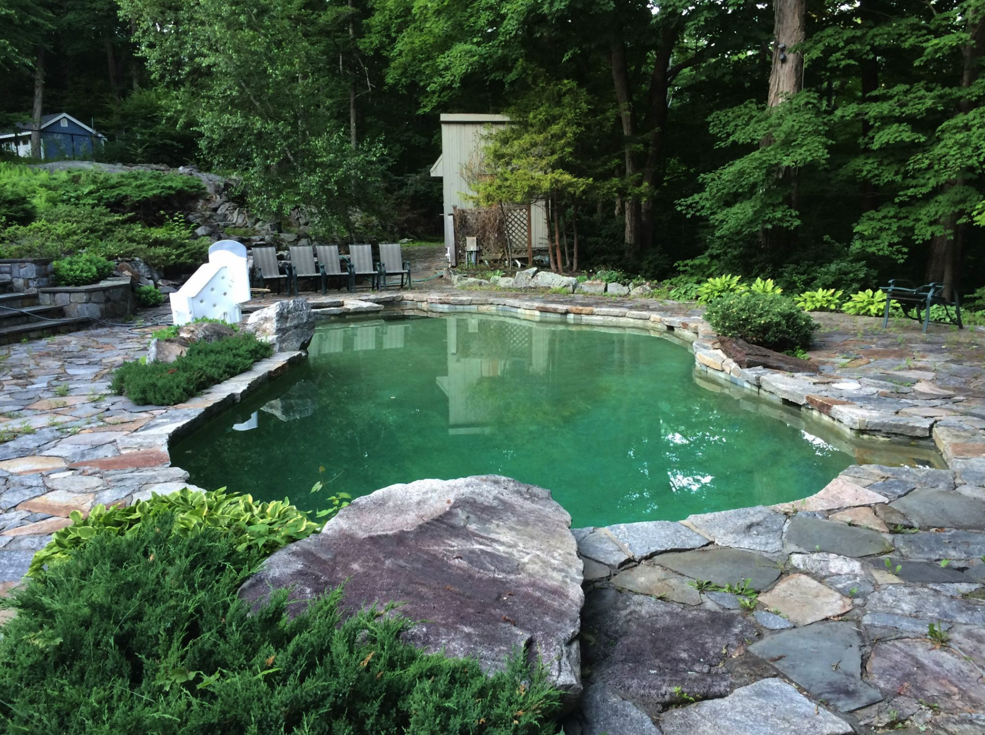 Before After A Landscaping Transformation in Westchester County
