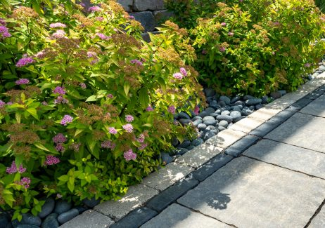 Closeup of Unilock Bristol Valley pavers, with Copthorne and Olde Greenwich Cobble border