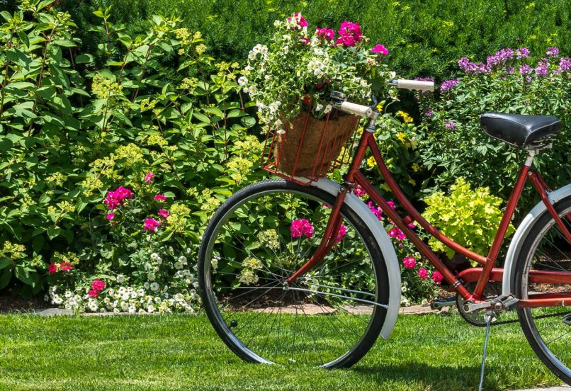 Vintage bicycle on lush lawn with rich foliage and flowers in the background