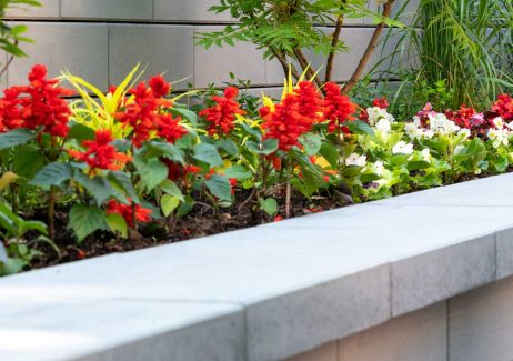 Close up of U-Cara planter with Universal coping