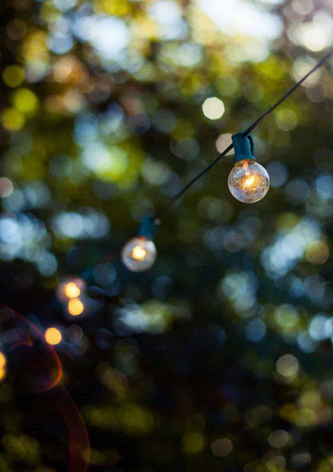 Outdoor Lightbulbs